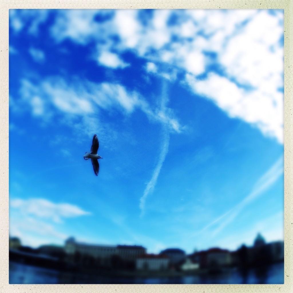 Tutorial 3 foto 01