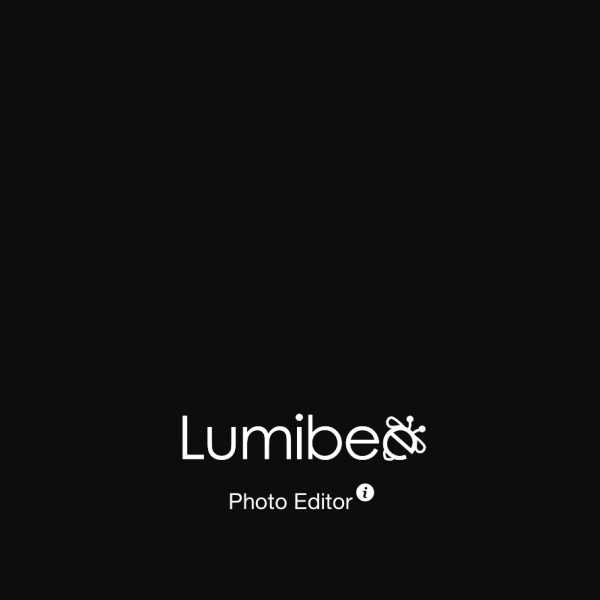 Lumibee cover