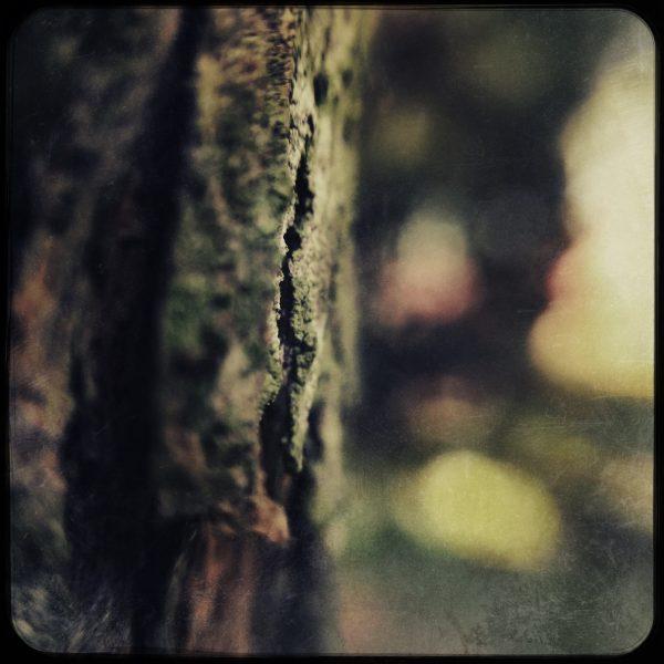 HipstamaticPhoto-497015230.451868