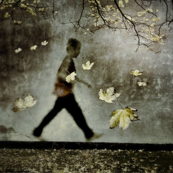Skip-Autumn-Walk